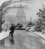 A Winter Days on the Grounds of the National Capitol