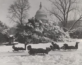 Snow at the Capitol has always attracted visitors eager to enjoy the winter wonderland, such as these sledders in 1938.