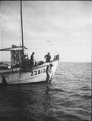 Tarpon Springs Fishing Boat