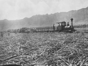 Workers Load a Locomotive with Sugar Cane
