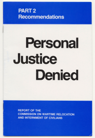 Personal Justice Denied Report