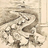 Clifford K. Berryman Lame Duck Cartoon