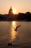 <em>Sunrise over the Capitol</em>