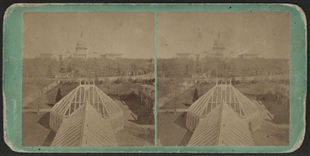 Capitol and Botanic Garden Stereoview