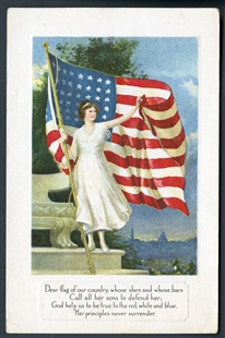 Flag Series No. 4 Postcard
