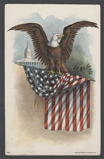 Capitol, Eagle and Flag Postcard