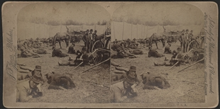 General Coxey's Weary Troops Stereoview