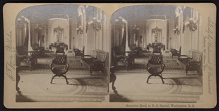 Reception Room in U.S. Capitol, Washington, D.C. Stereoview