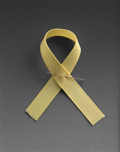 Iraq War Memorial Ribbon