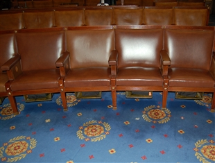 House Chamber Carpet Section