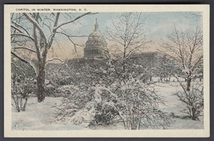 Capitol in Winter, Washington, D.C.