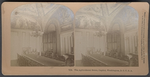 The Agricultural Room, Capitol. Washington, D.C. U.S.A. Stereoview