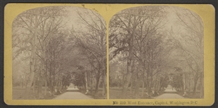 West Entrance, Capitol. Washington DC Stereoview