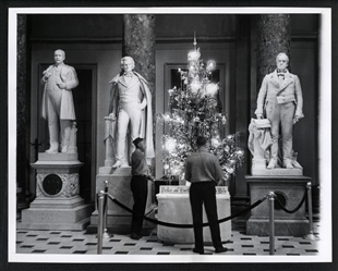 Christmas Tree at the Capitol