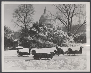 Winter Comes to Washington, D.C.