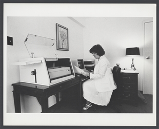 Congressional Intern Working at a Computer
